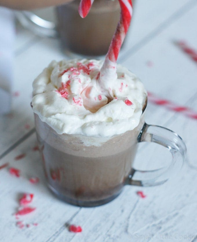 A peppermint mocha with whipped cream and a peppermint stick.