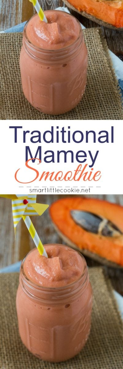 Traditional Mamey Smoothie ~ A sweet and refreshing tropical smoothie made with Mamey (Zapote) fruit, milk, vanilla, sugar, and cinnamon. Just like abuela used to make! #tropicalfruit #smoothie