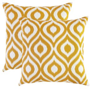 Accent Throw Pillow Covers