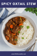 Spicy Oxtail Stew Pin 4
