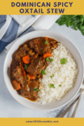 Spicy Oxtail Stew Pin 3