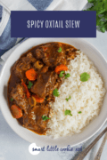 Spicy Oxtail Stew Pin 1