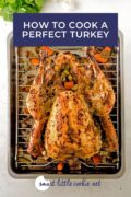 Top shot of a whole roasted mojo turkey on a rack over a pan. Pinterest 1