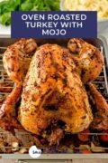 A whole roasted turkey on a rack. Pinterest 3