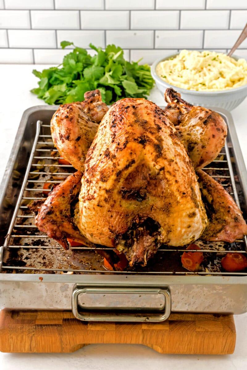A whole roasted turkey on a rack.