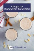 Pinterest graphic. Coquito drink with text.