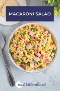 Pinterest graphic. Macaroni Salad with text.