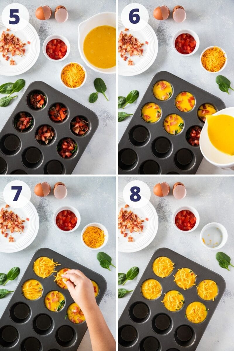 Adding the bacon and egg muffins ingredients to the muffin pan to bake